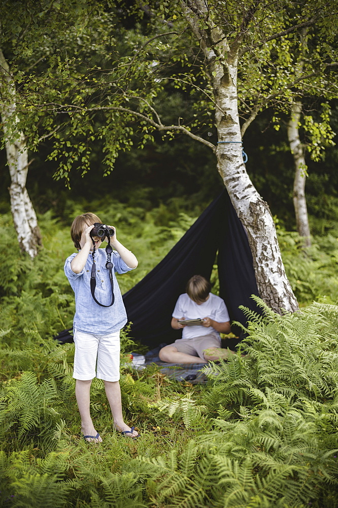 Two boys camping in New Forest. One sitting under a black canvas shelter. One boy looking through binoculars, Hampshire, England