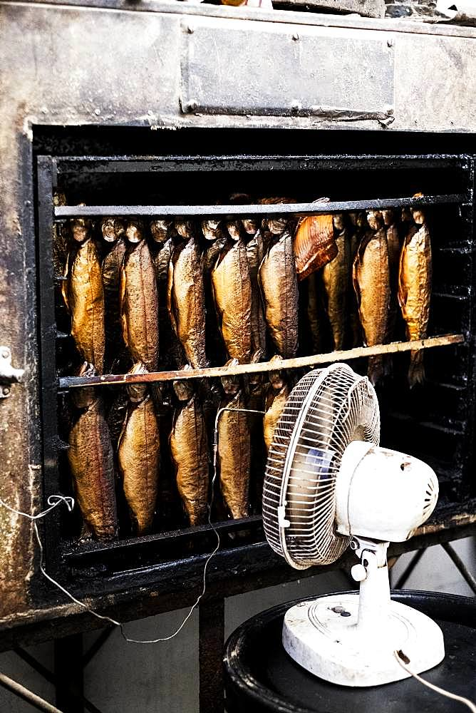 Close up of rows of freshly smoked whole trout in a smoker, white fan standing in front