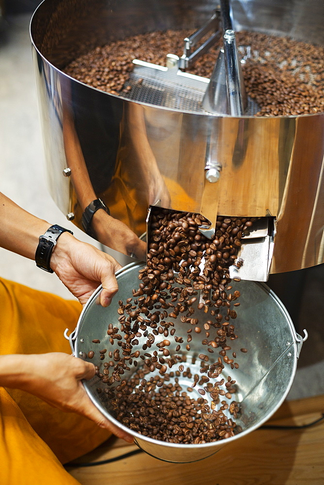 High angle close up of person holding metal bucket with freshly roasted coffee beans, Kyushu, Japan