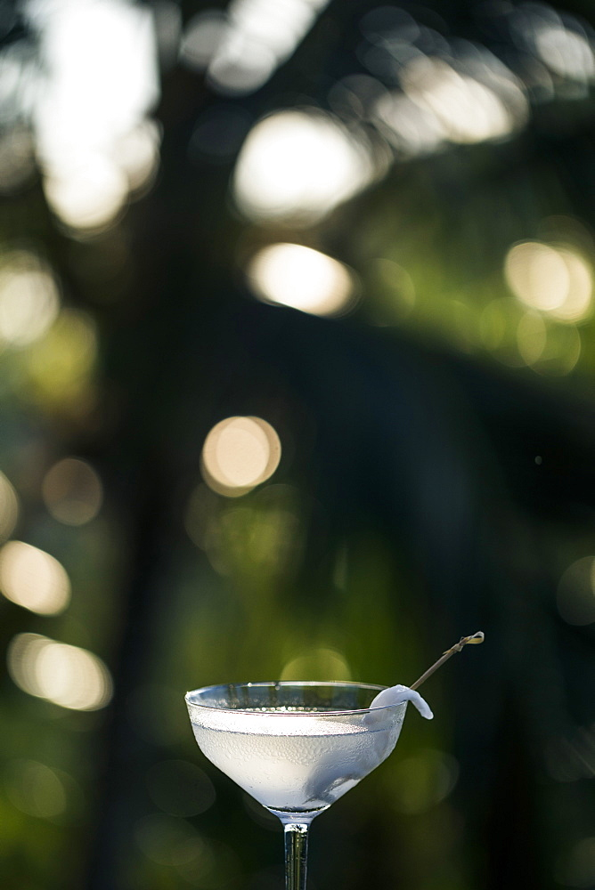 Close up of glass of coconut martini, Thailand