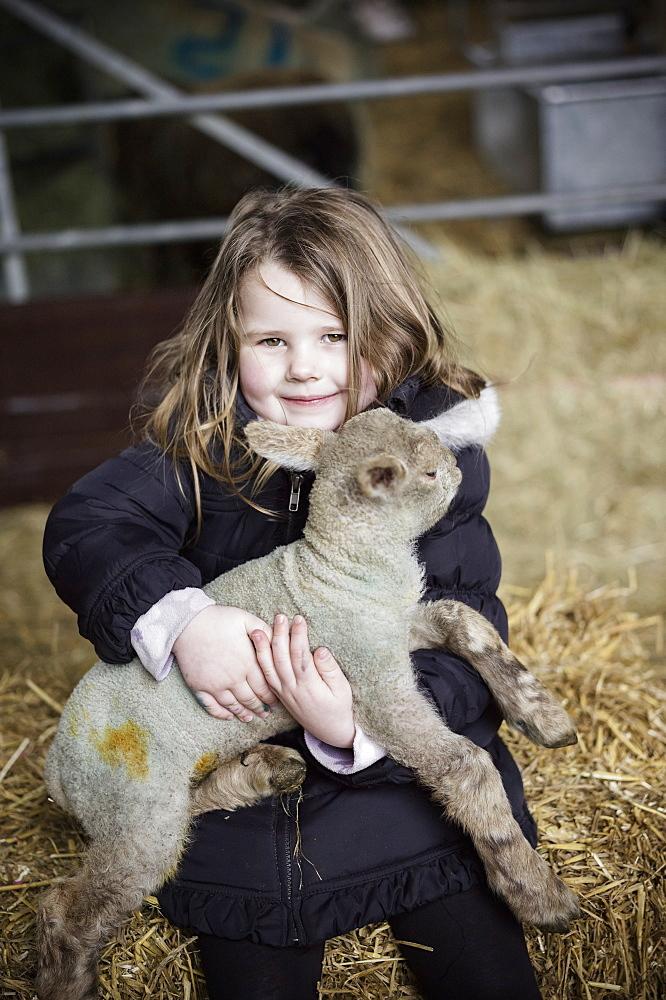 A girl holding a small new-born lamb, Wimborne, Dorset, England