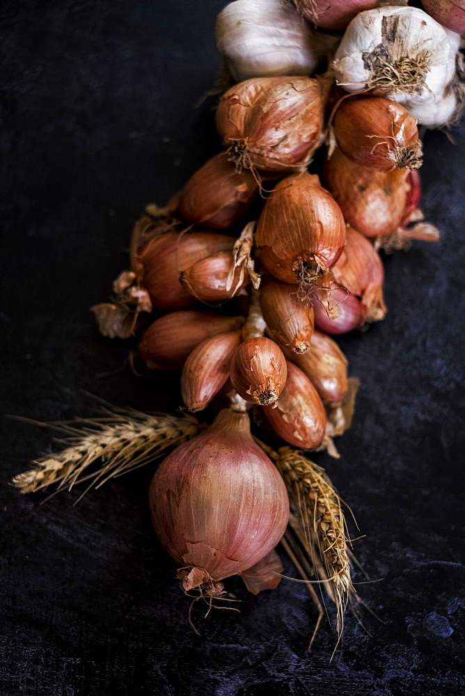 High angle close up of string of onions and garlic on black background, United Kingdom - 1174-7808