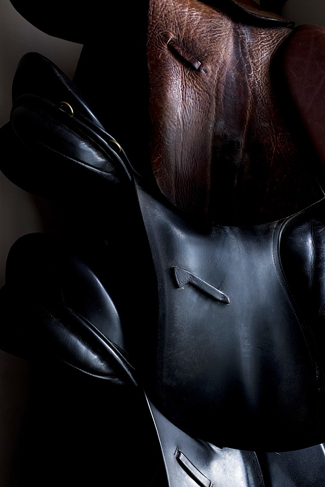 Close up of a selection of black and brown leather saddles, Berkshire, United Kingdom