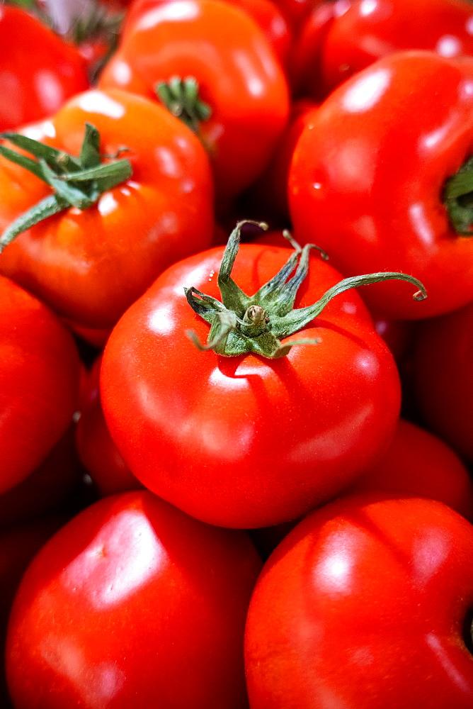 Large red ripe tomatoes, market, Tavira, Algarve, Portugal