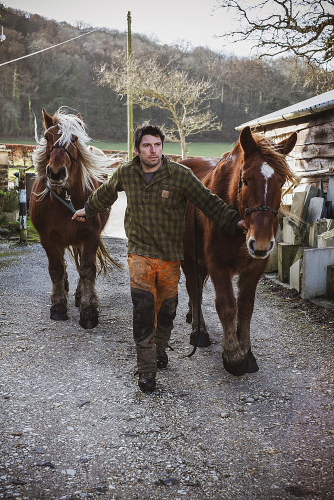 Portrait of a logger with two of his work horses, Devon, United Kingdom - 1174-8252