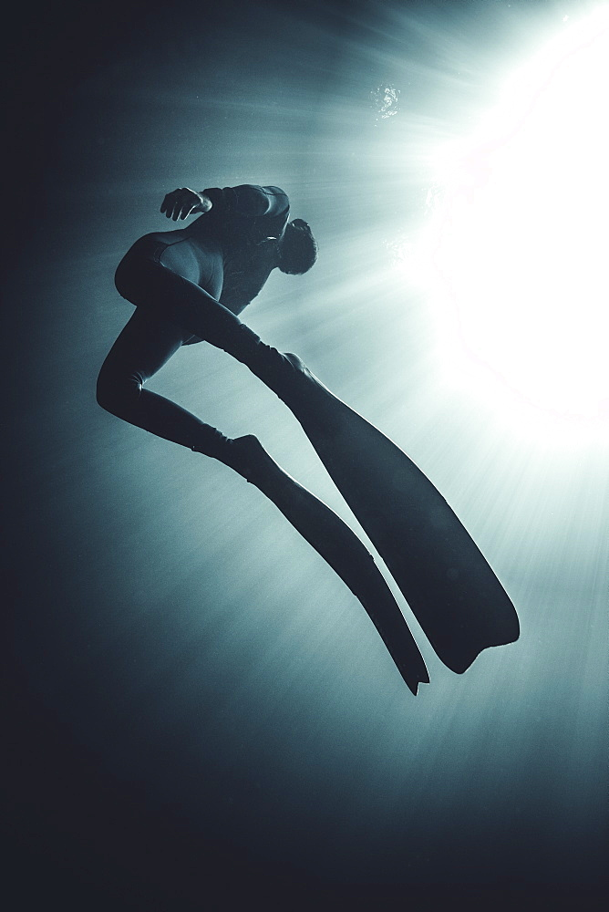 Low angle underwater view of diver wearing wet suit and flippers, sunlight filtering through from above, United States of America