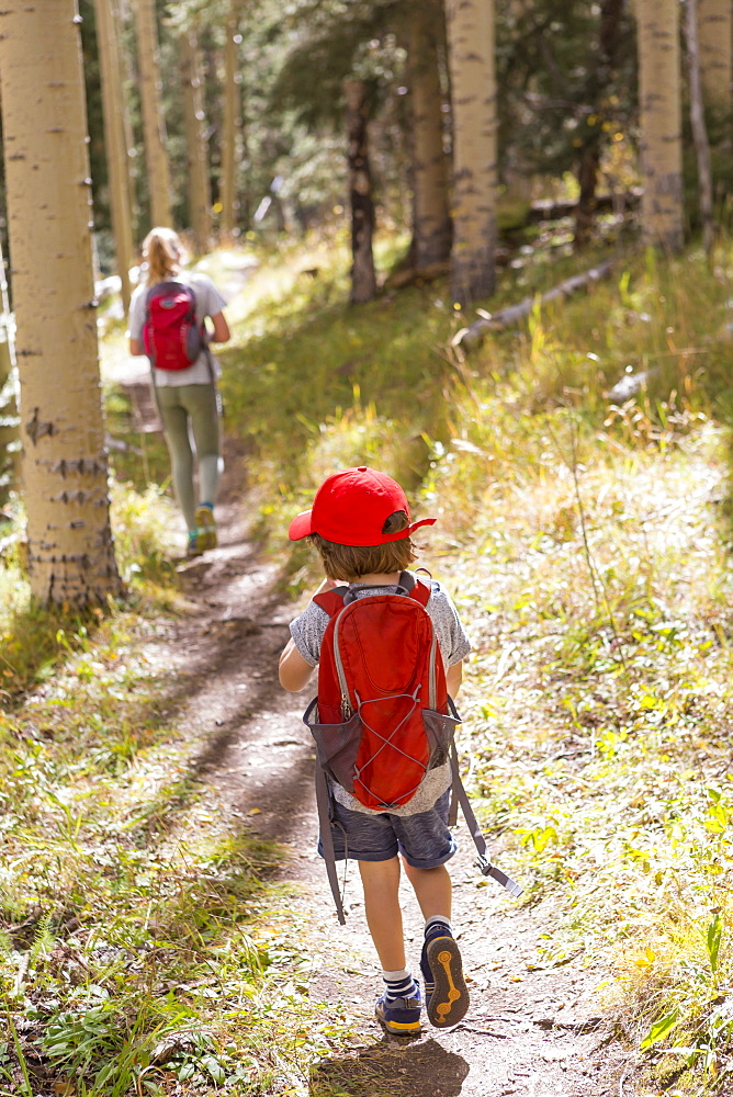 rear view of children walking on nature trail