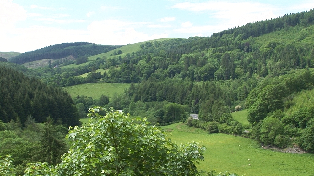 Scenic Welsh valley. Near Machynlleth. Powys. Wales