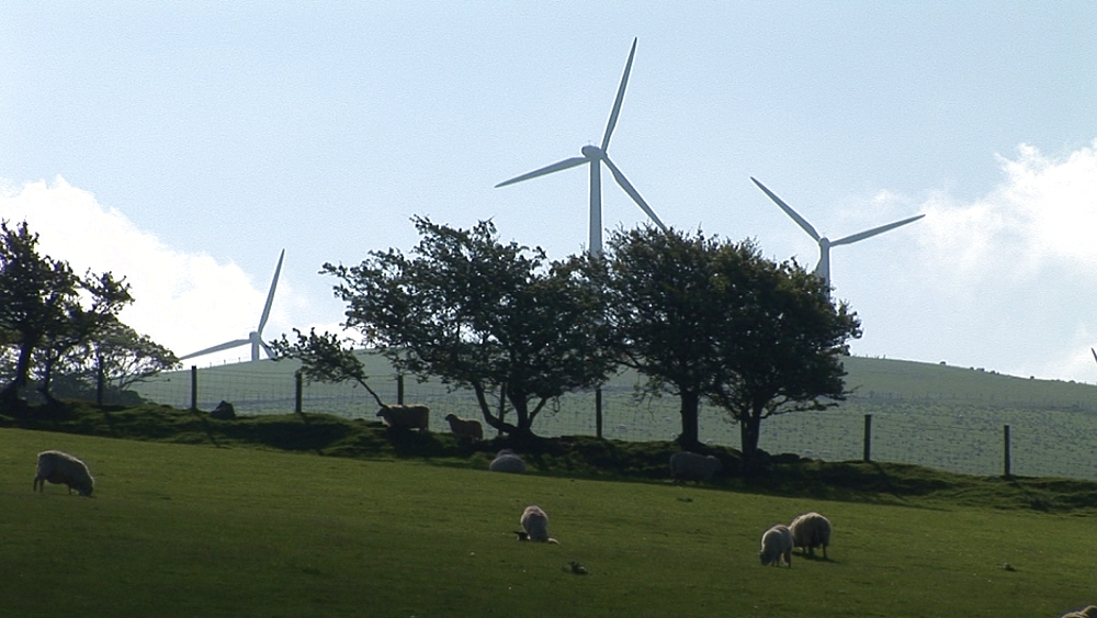 Static wind turbines with sheep. Near Centre for Alternative Technology. Machynlleth. Powys. Wales