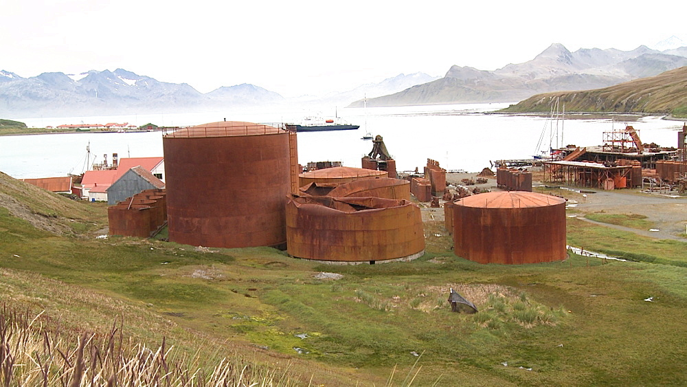 Grytviken Whaling Station. South Georgia Island - 1034-1034