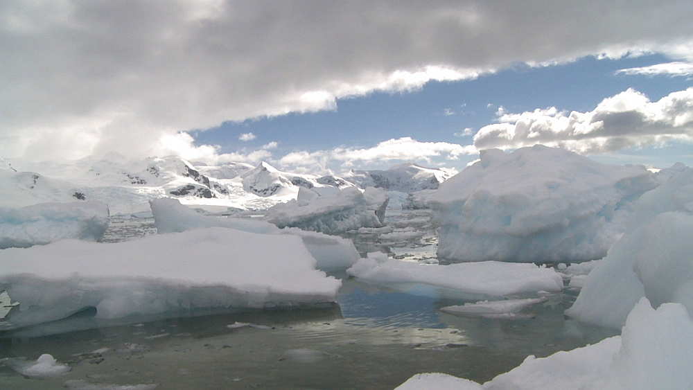 Ice bergs move near coast. Neko Harbour, Antarctic peninsula