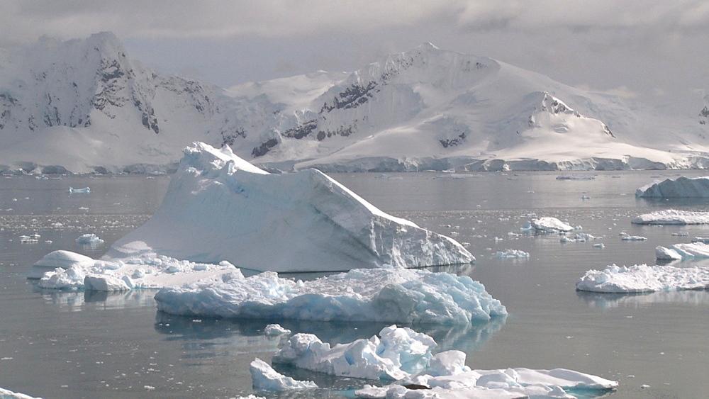 Icebergs. Almirante Brown. Paradise Bay