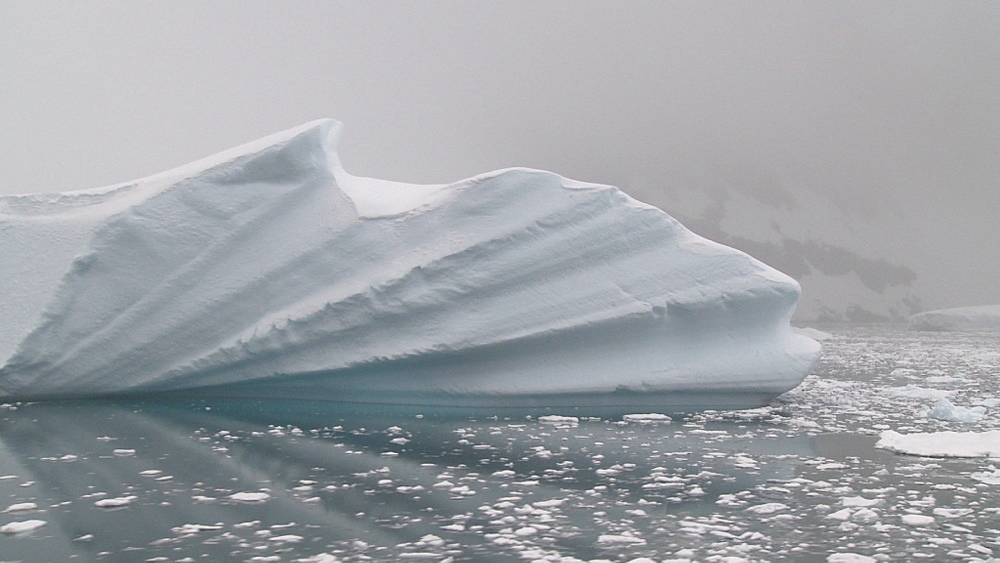 Iceberg. Track past iceberg from boat. Booth Island, Hovgaard Bay, Antarctica - 1034-921