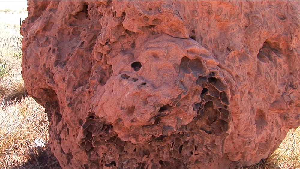 Termite mound. Australia - 945-386