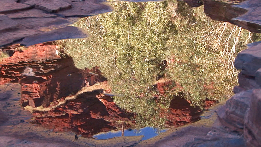Reflection in puddle. Australia - 945-398