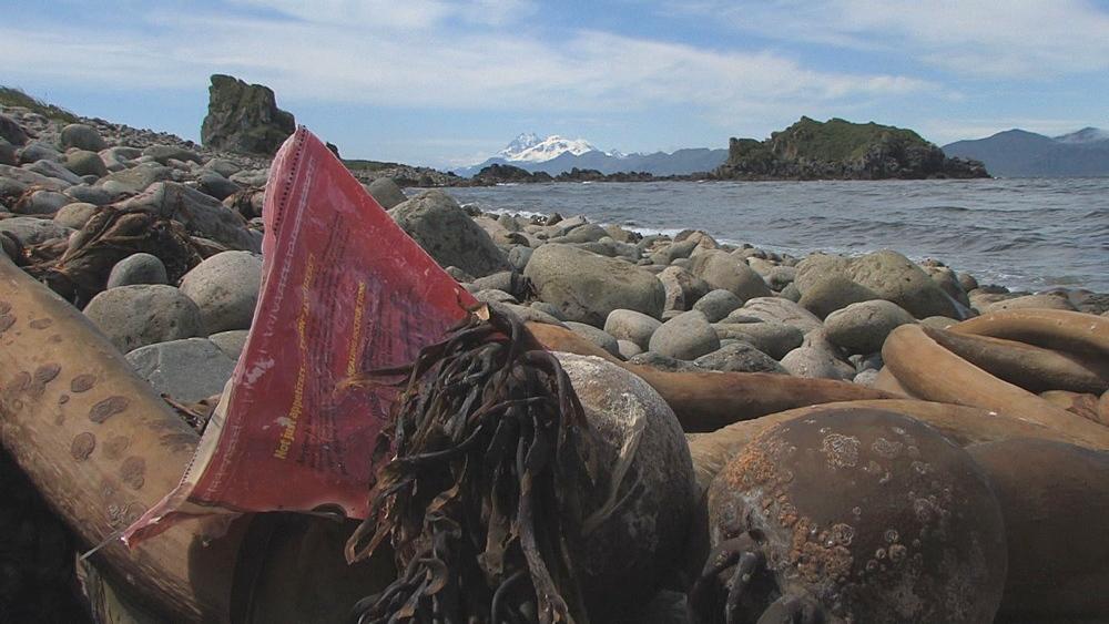 Discarded plastic on pebble beach. Aleutian Islands, Bering Strait - 959-13