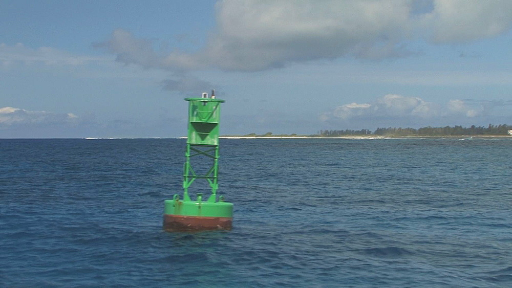 Booby (currently unidentified) on buoy, Midway island in background.  Midway Island. Pacific - 959-15