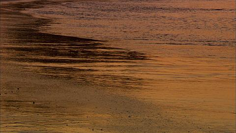 Scenic, waves, white water on to damp sand, reflects orange sunrise light, Mozambique