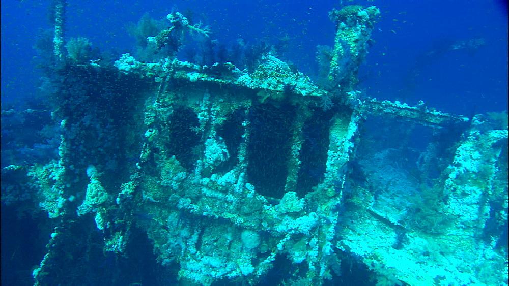 Wreck, underwater, track, Saudi Arabia, Middle East - 1010-3595