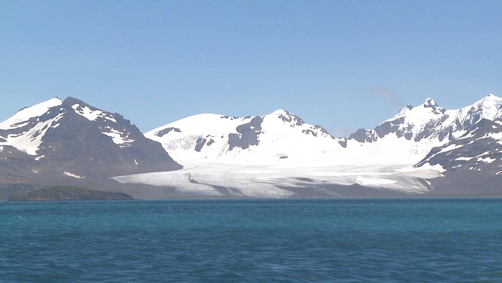 South Georgia Scenic, Lucas Glacier, Salisbury Plain.  Bay of Isles, South Georgia
