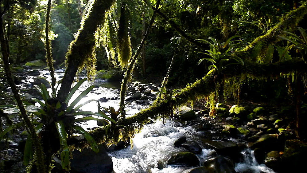 San Gerardo De Dota River, Costa Rica, Central America