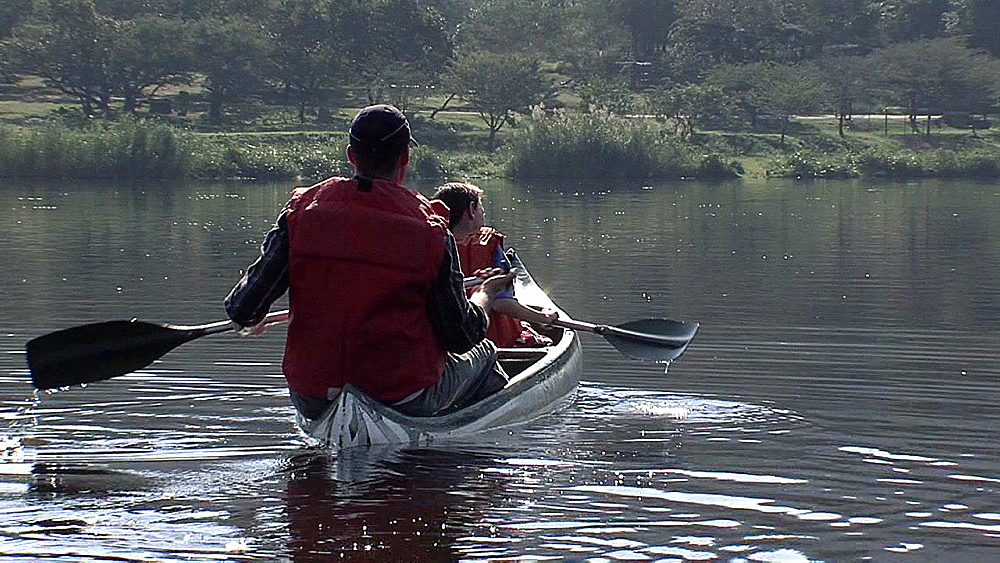 Man and son canoeing down a lake near a road - 1114-1523
