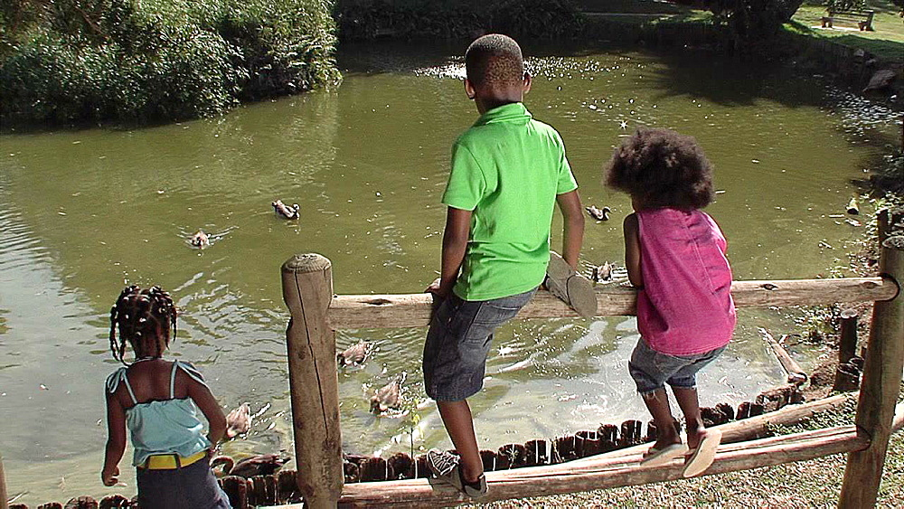 Three kids throwing food to ducks