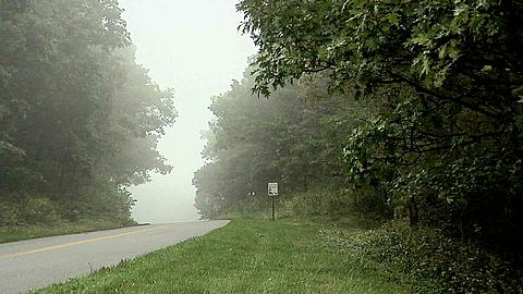 Heavy Fog along the Blue Ridge Parkway in North Carolina