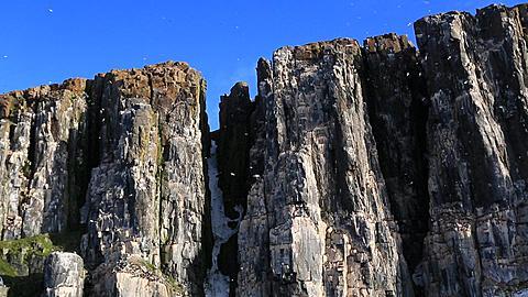 Pan along top of bird cliffs, Antarctica - 1159-1106