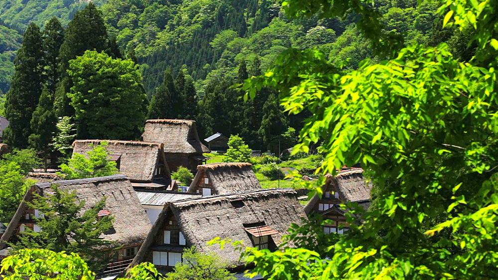 Gokayama Village, Ishikawa Prefecture, Japan - 1172-1004