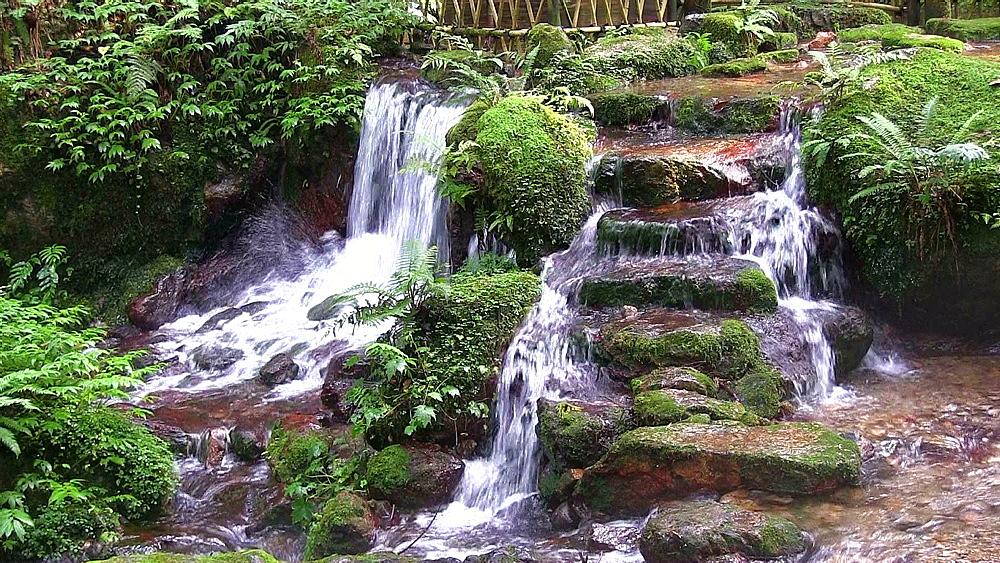 Uriwari Waterfall, Fukui Prefecture, Japan - 1172-1068