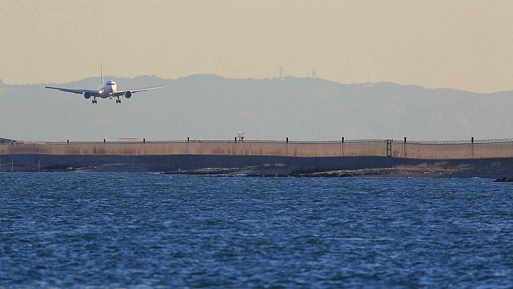 Airplane landing at Haneda airport in Tokyo, Japan - 1172-1549