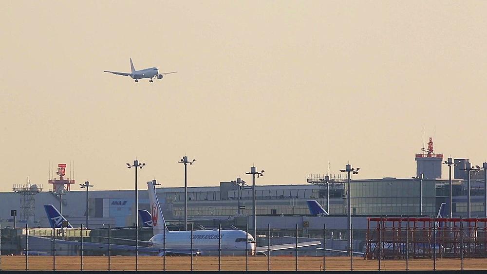 Airplane landing at Haneda airport in Tokyo, Japan - 1172-1550