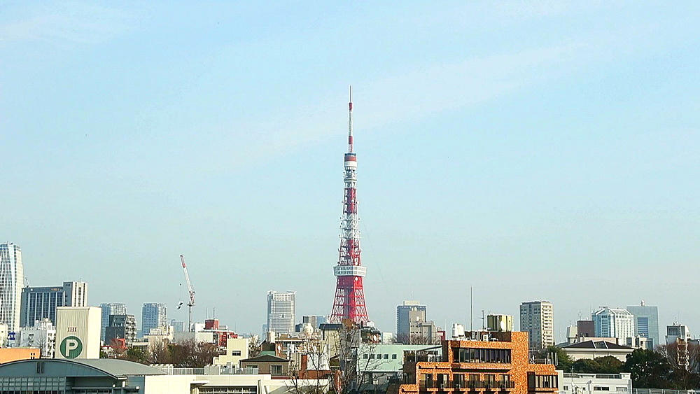 View of Tokyo cityscape and Tokyo Tower, Tokyo, Japan - 1172-1744