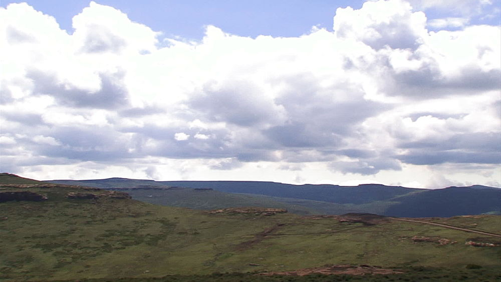 Pan of mountains in Lesotho to Aloe Arborescens (krantz aloe, candelabra aloe) Aloe flowers blowing in the wind, Lesotho, Africa - 1182-119