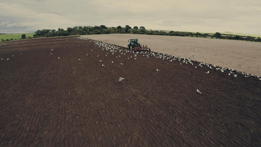 Drone shot of a tractor ploughing field in Oxfordshire, England, United Kingdom, Europe