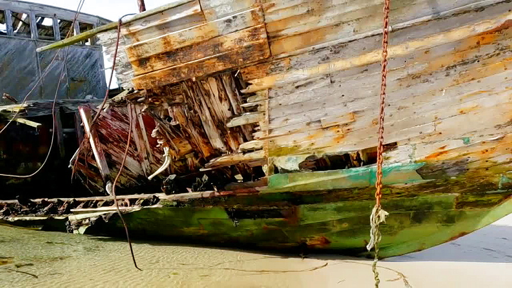 Photographer taking photos of the derelict wooden ship on New Island, Falkland Islands, South Atlantic Ocean, South America - 1218-924