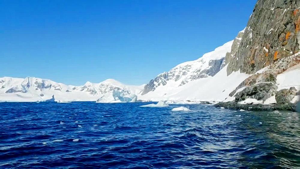 Close up of icebergs and gentoo pengiuns roaming around in Antarctica - 1218-932