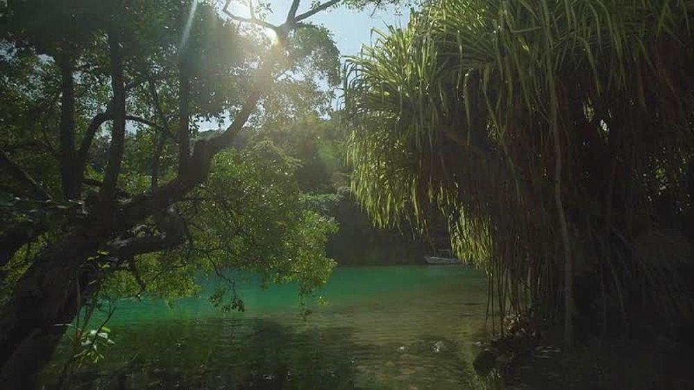 Blue Lagoon, Port Antonio, Jamaica, West Indies, Caribbean, Central America - 1239-1