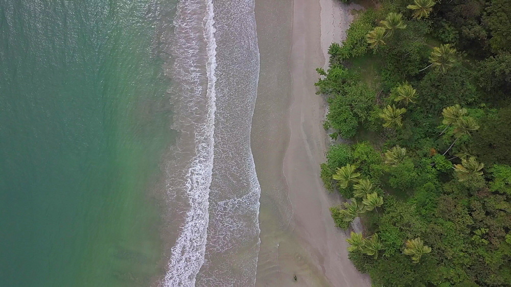 Drone over La Sagesse Beach, Grenada, Caribbean, West Indies.