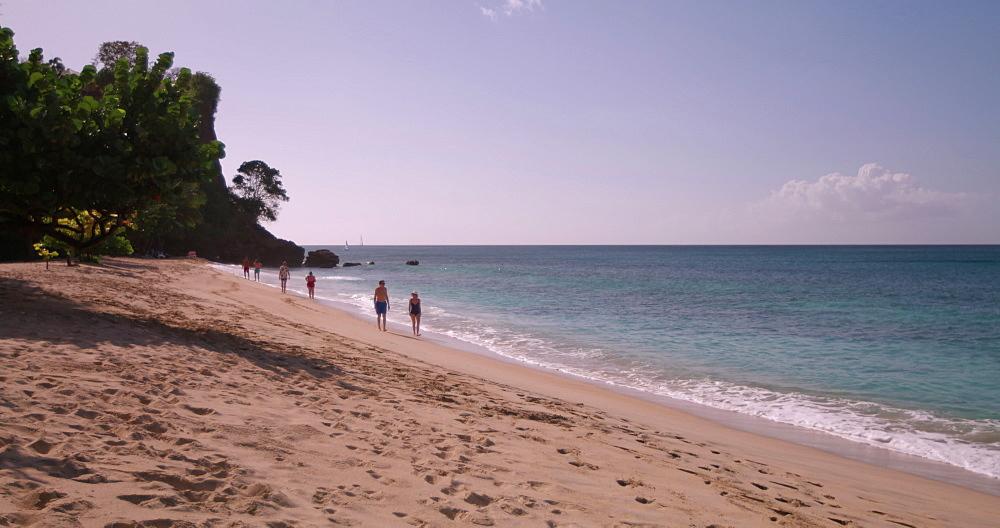 Magazine Beach shoreline, Grenada, West Indies, Caribbean, Central America