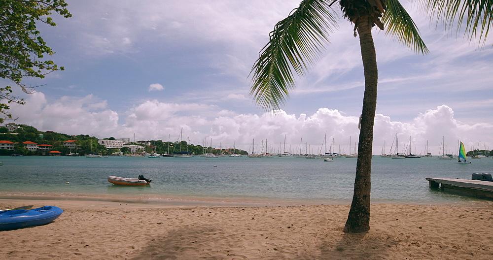 Beach, Grenada, West Indies, Caribbean, Central America