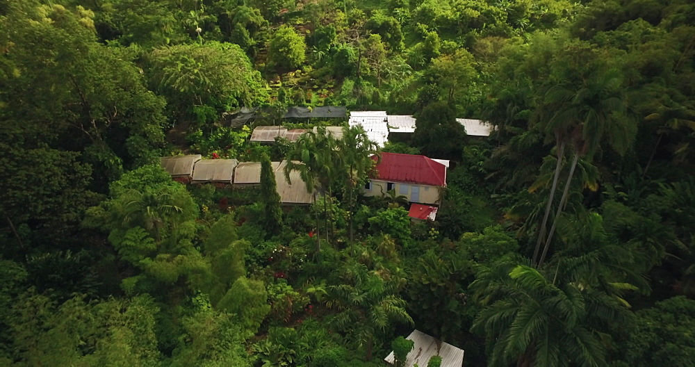 Drone over St Rose Nursery Tropical Garden, Grenada, West Indies, Caribbean