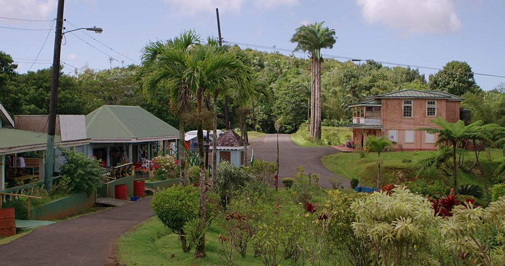 Entrance area of Grand Etang National Park, Grenada, West Indies, Caribbean