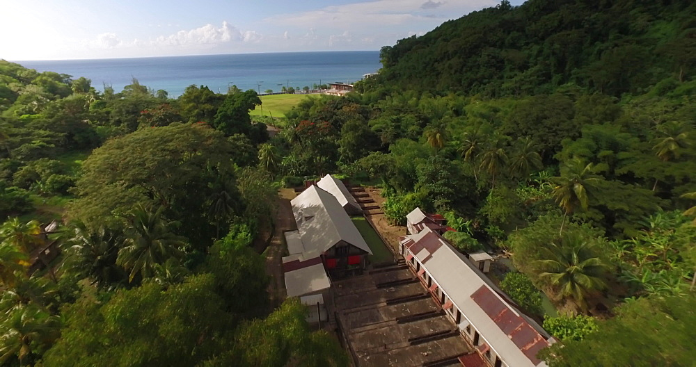 Drone aerial view of Dougaldston Estate, Gouyave, Grenada, West Indies, Caribbean, Central America - 1239-229