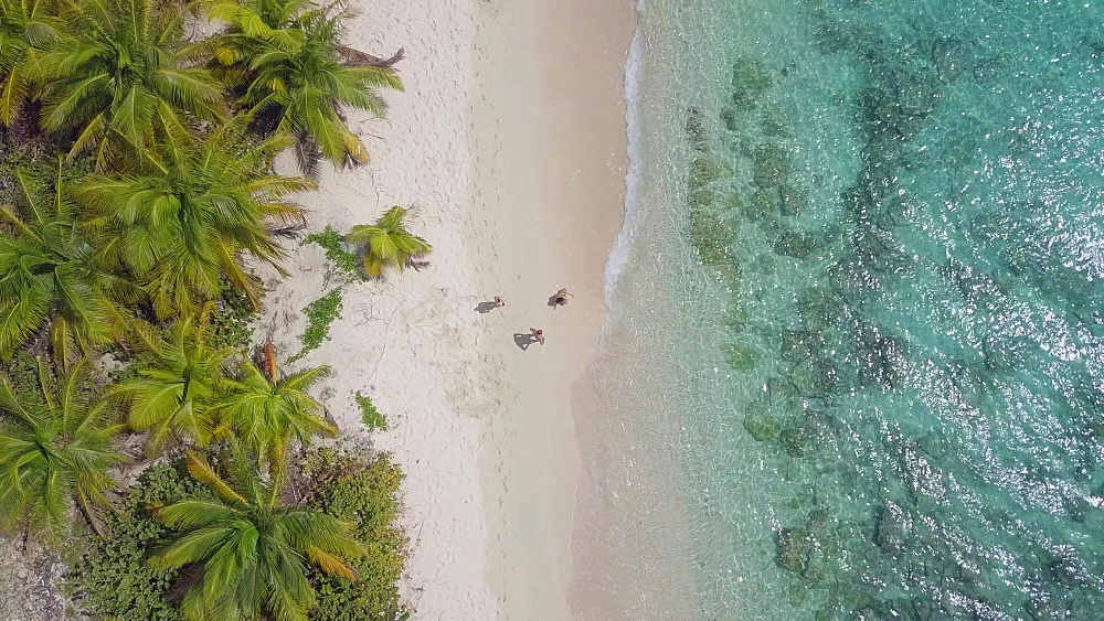Aerial Drone shot top down Sandy Island Beach, Carriacou, Grenada, Caribbean