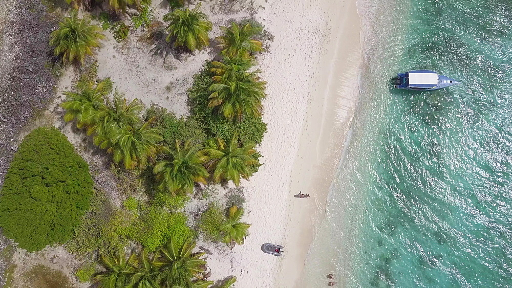 Aerial drone shot top down along Sandy Island Beach, Carriacou, Grenada, West Indies, Caribbean, Central America