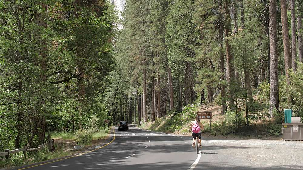 Cyclists travelling through Yosemite Valley, Yosemite National Park, UNESCO World Heritage Site, California, USA, North America