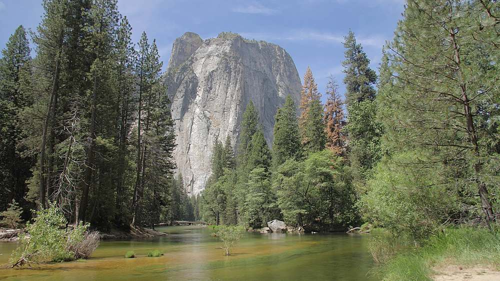 Cathedral Rocks and Merced River from Yosemite Valley, UNESCO World Heritage Site, California, United States of America, North America
