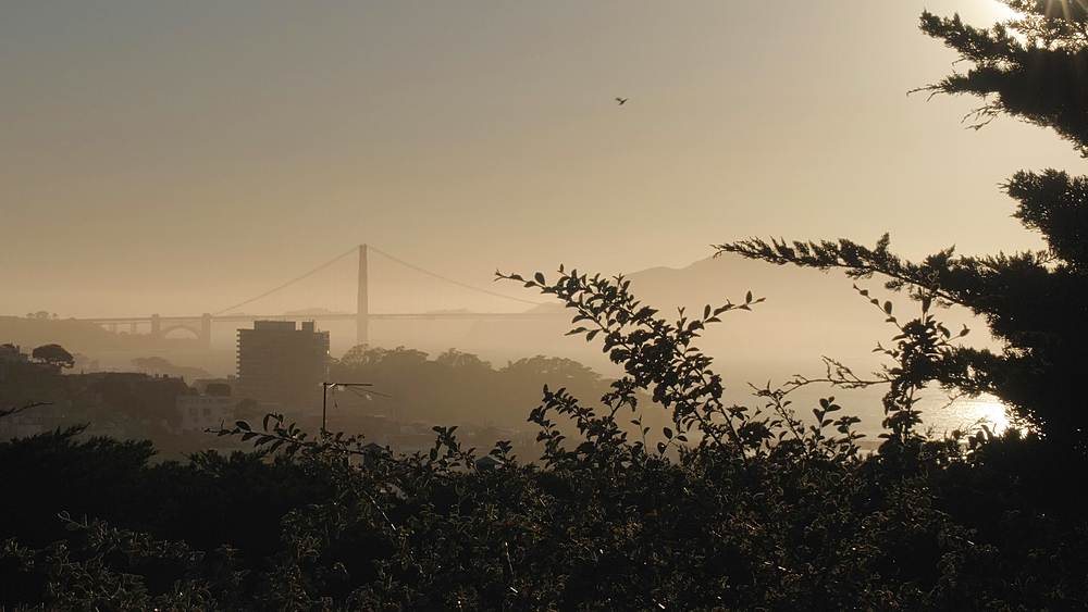 Foggy Sunset over Golden Gate Bridge from Coit Tower, San Francisco, California, United States of America, North America